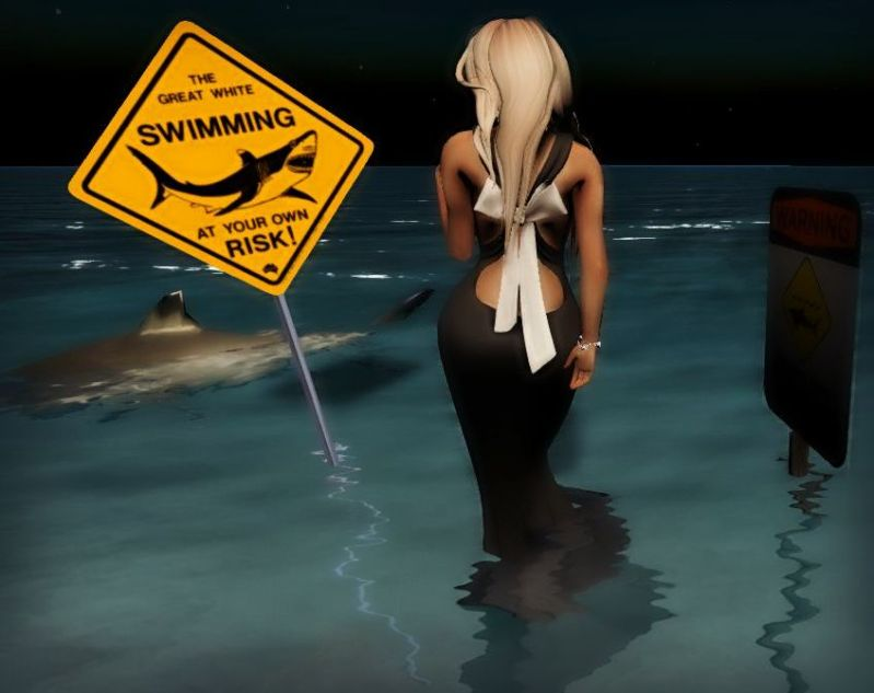 Beware of the Sharks