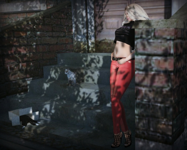 goodies from shine by [ZD] & Emporium